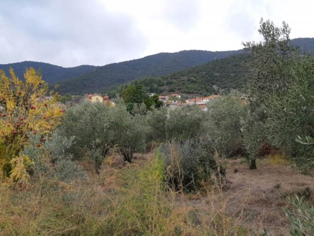 (For Sale) Land Plot || Kavala/Eleftheres - 1.108 Sq.m, 20.000€